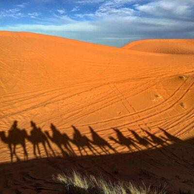 Merzouga Camel Ride